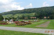 Pillnitzer-Gartentag-2013-26