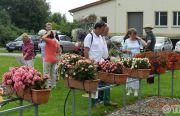 Pillnitzer-Gartentag-2013-36