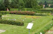 Pillnitzer-Gartentag-2013-54